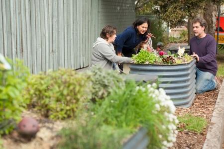 Nash Street Community Garden