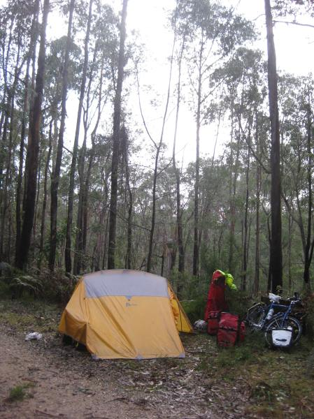 Camping in East Gippsland Photo: Greg Foyster