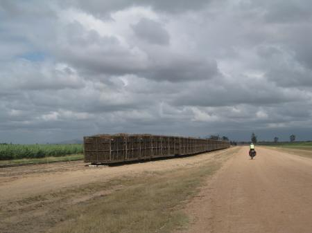 Cycling past the cane fields, Far North Queensland Photo: Greg Foyster